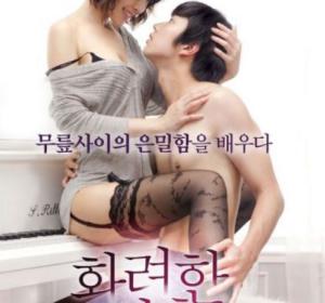 华丽的外出 화려한외출 HD1080P高清下载(2013韩国)(在线下载)