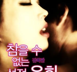 [情爱游戏Sexual Play][韩语中字][2012年韩国限制级电影]